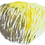 Thumbnail: Lion's Mane Mushroom Extract