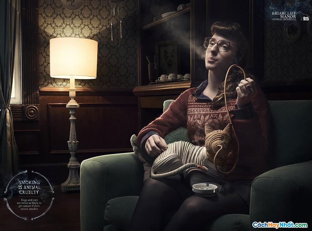 Chống hút thuốc quảng cáo động vật