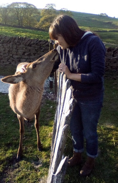 Meeting the resident deer in the Peak District