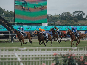 NEWS | Update on securing a sustainable future for horse racing in the Auckland region