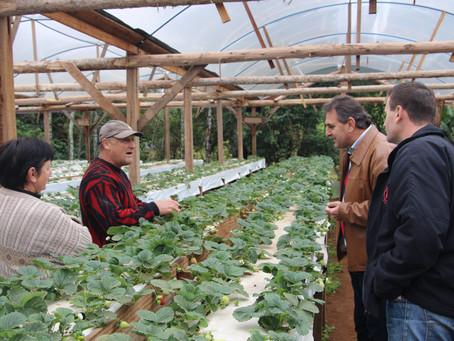 Produção orgânica é tema de seminário estadual