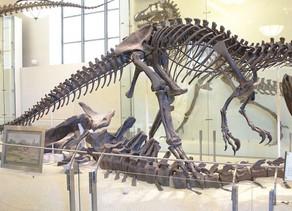 Kemik Savaşları: Marsh&Cope ve Dinozor Keşifleri