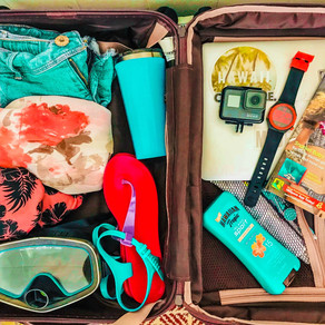 Traveler's Packing List