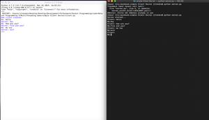 Socket Programming in Python - Chat Application