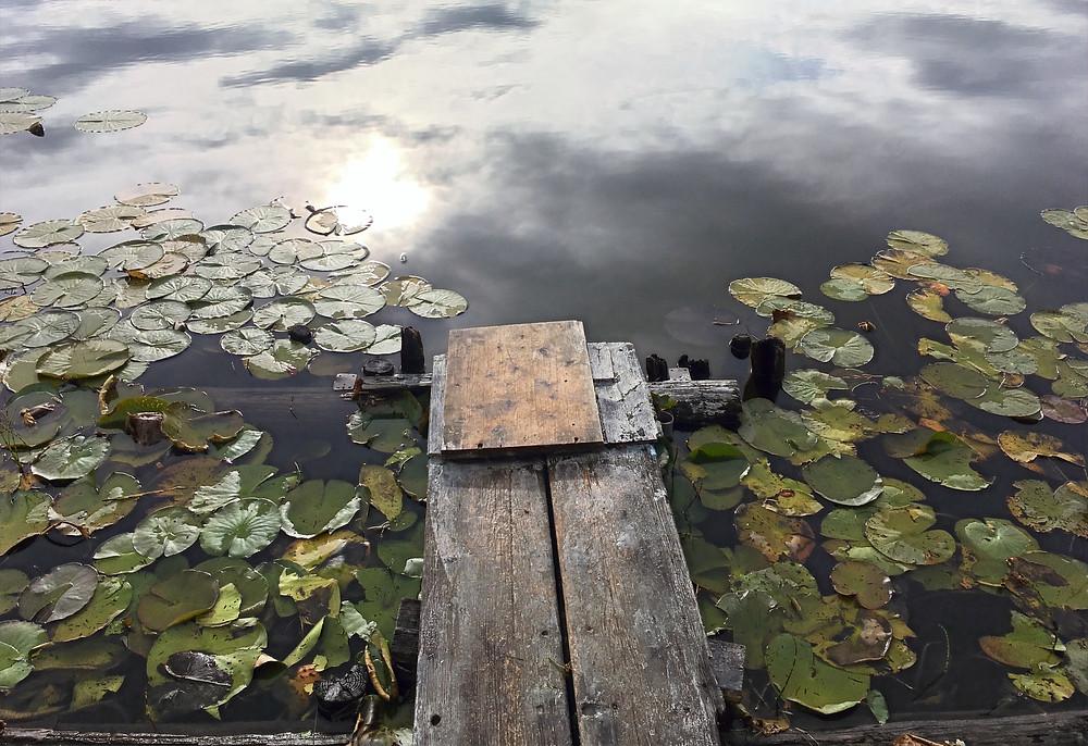 Am Ufer des Geroldsees. Ein Holzsteg führt ins Wasser, umgeben von Seerosen