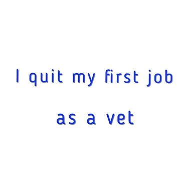 I Quit My First Job as a Vet