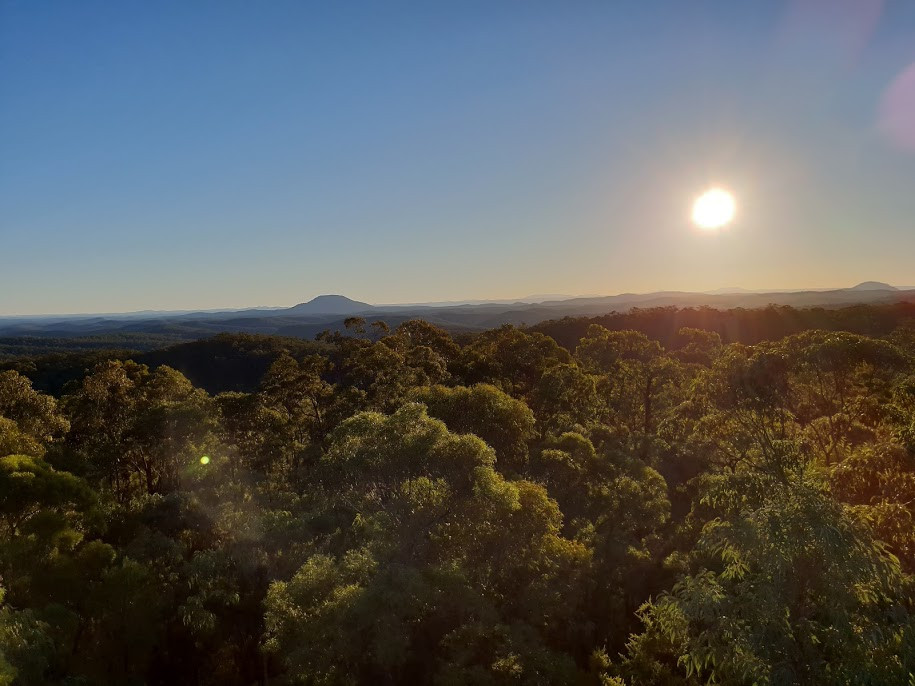 Mount Yengo from Finchley Lookout