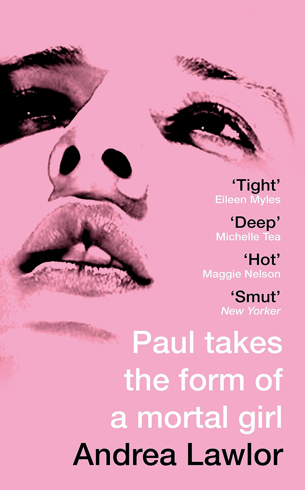 Paul Takes The Form Of A Mortal Girl by Andrea Lawlor : the book slut book review