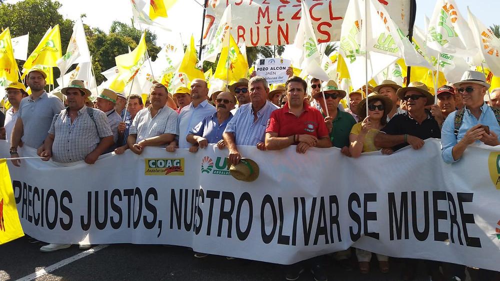 Lidl Schweiz; Andalusische Olivenbauern demonstrieren für faire Olivenölpreise (09.07.2019; Bild: UPA Andalucía) - evoo.expert