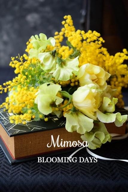 3月8日はミモザの日。イタリアでは男性から女性へミモザの花を贈る日です。