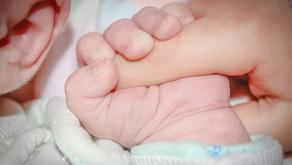 [심리상담 이야기]유아의 심리적 탄생