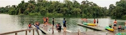 Jadescape is only 5 minutes to MacRitchie Reservoir