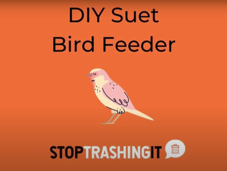 Easy DIY Vegan Suet Bird Feeder