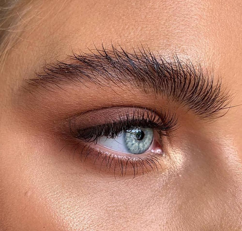 Bushy Brows, sobrancelhas selvagens maquiagem
