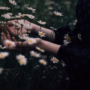 Letting Go (Poem)