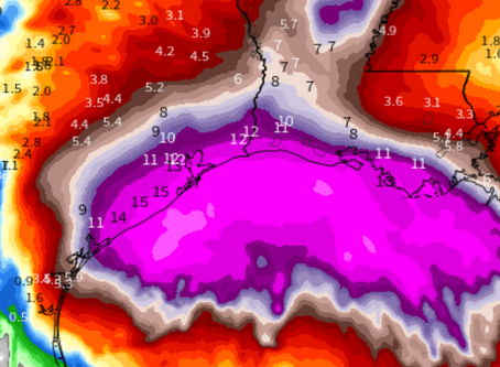 Up to 20 inches of rain expected from Tropical Storm Beta: