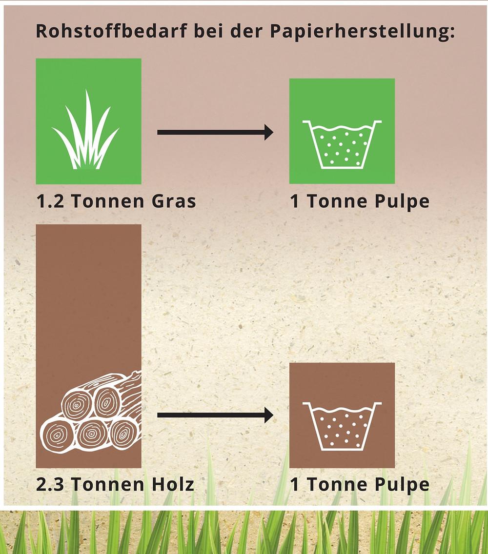 Schema zum Rohstoffbedarf bei der Papierherstellung von Graspapier im Vergleich zu Papier aus Holz bzw. Zellstoff