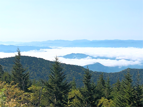 Travel to Great Smoky Mountains National Park