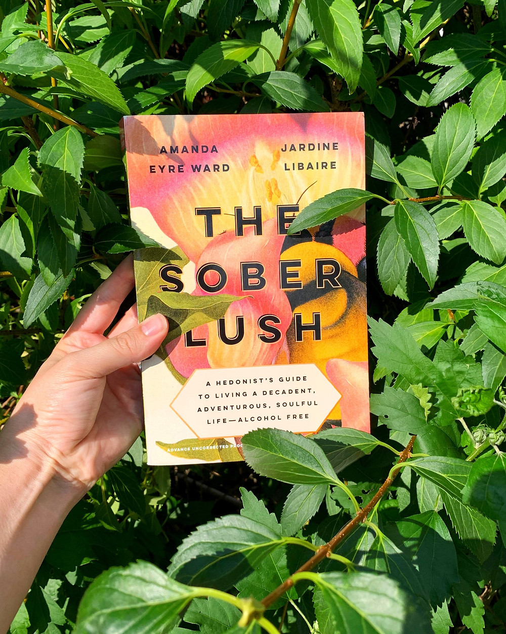 A copy of The Sober Lush is nestled among green leaves, held by a hand in a bush.