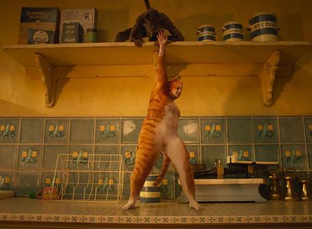 No Plot, No Genitals, No Fun: A Catversation about Cats