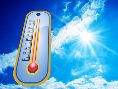 Sommer, Sonne, Hitze – des einen Freud ist des anderen Leid