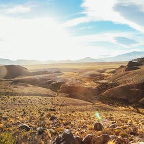 En el mejor de los desiertos...