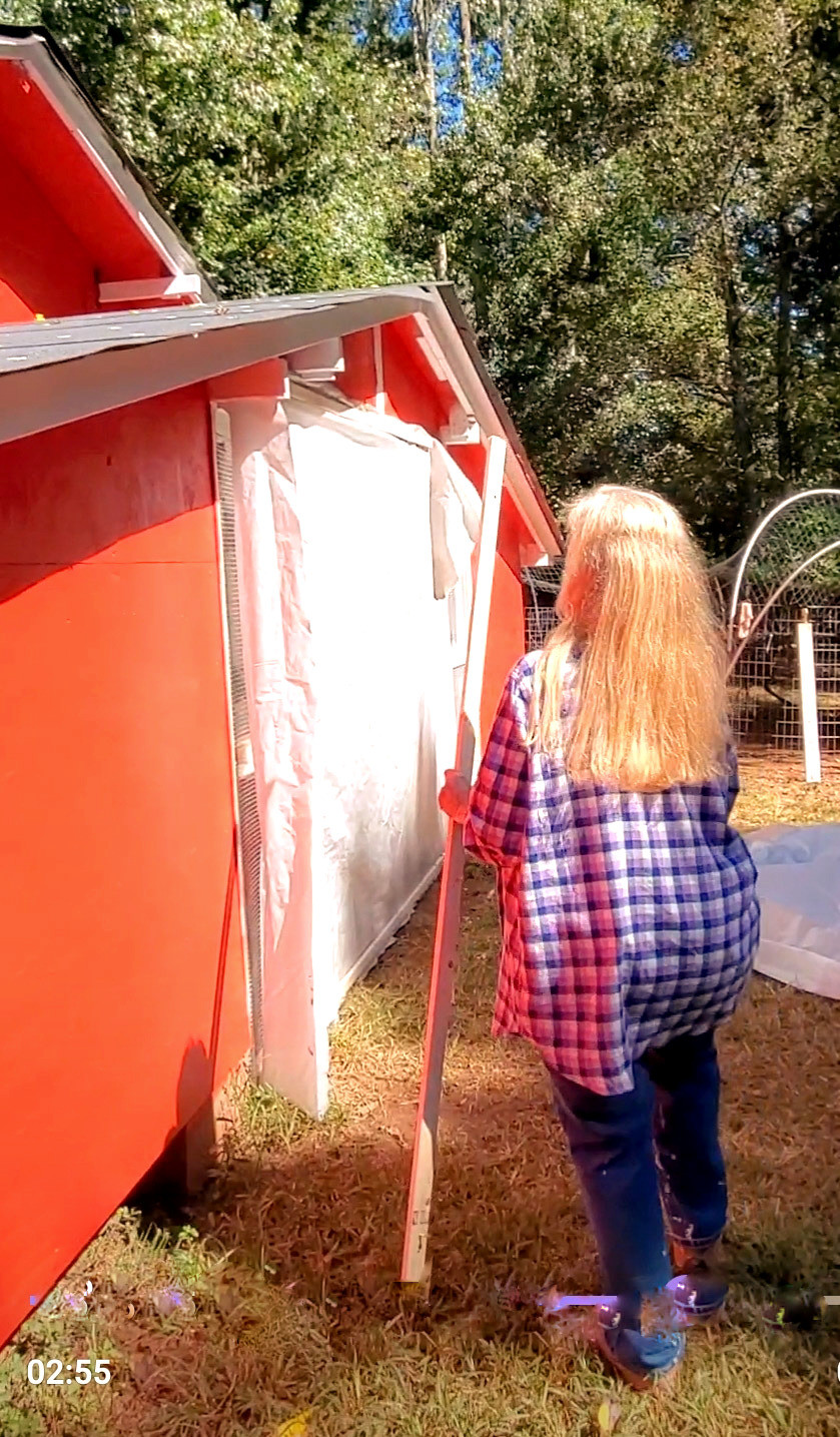 """Using 1"""" X 2"""" slats of wood 8 foot long makes putting this plastic over this chicken run easy."""