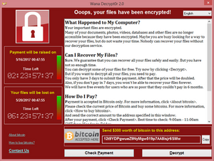 This is a screen of a Ransomware where you can see the creator is demanding money to unlock!