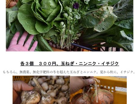 コトリノ木、新メニュー紹介