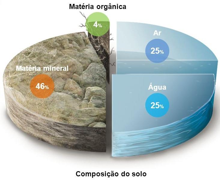 Figura 1: Composição Geral do Solo