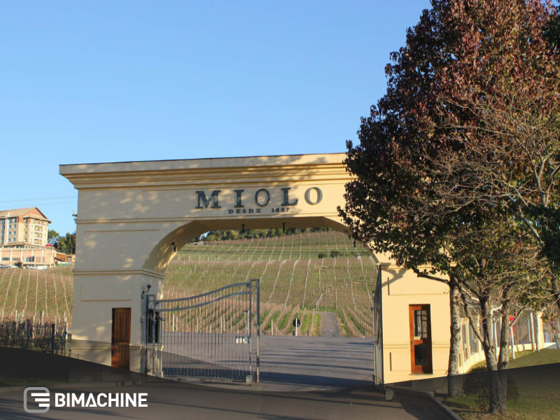 MIOLO - winery