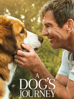 A Dogs Journey Movie Download