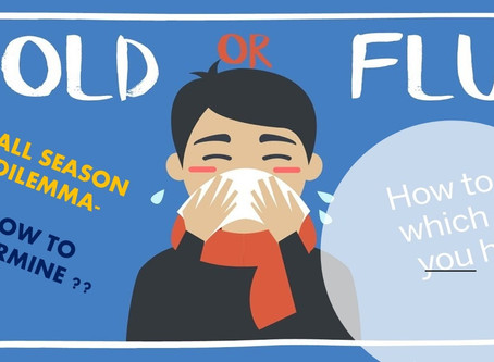 FALL SEASON- IDENTIFY COMMON COLD & FLU-TAKE CARE OF HEALTH