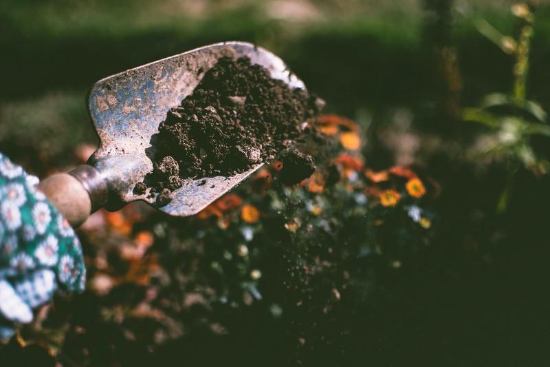 permaculture biomimétisme principes