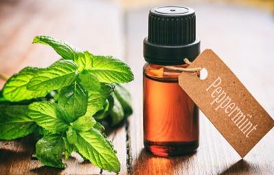peppermint oil by doTerra