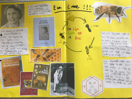 Some lovely year five work