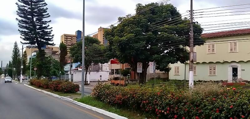 Avenida 33 | Vila Santa Cecília