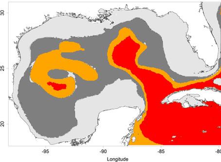 Classifying Pelagic Habitats in the Gulf of Mexico
