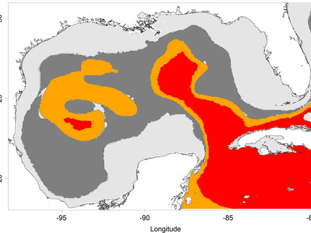 Classifying Pelagic Habitats in the Gulf of Mexico
