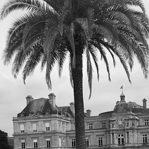 Paris The Left Bank - Le Luco