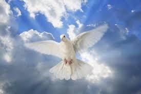 CİBRİL HADİS BAĞLAMINDA İSLÂM'IN RUHU