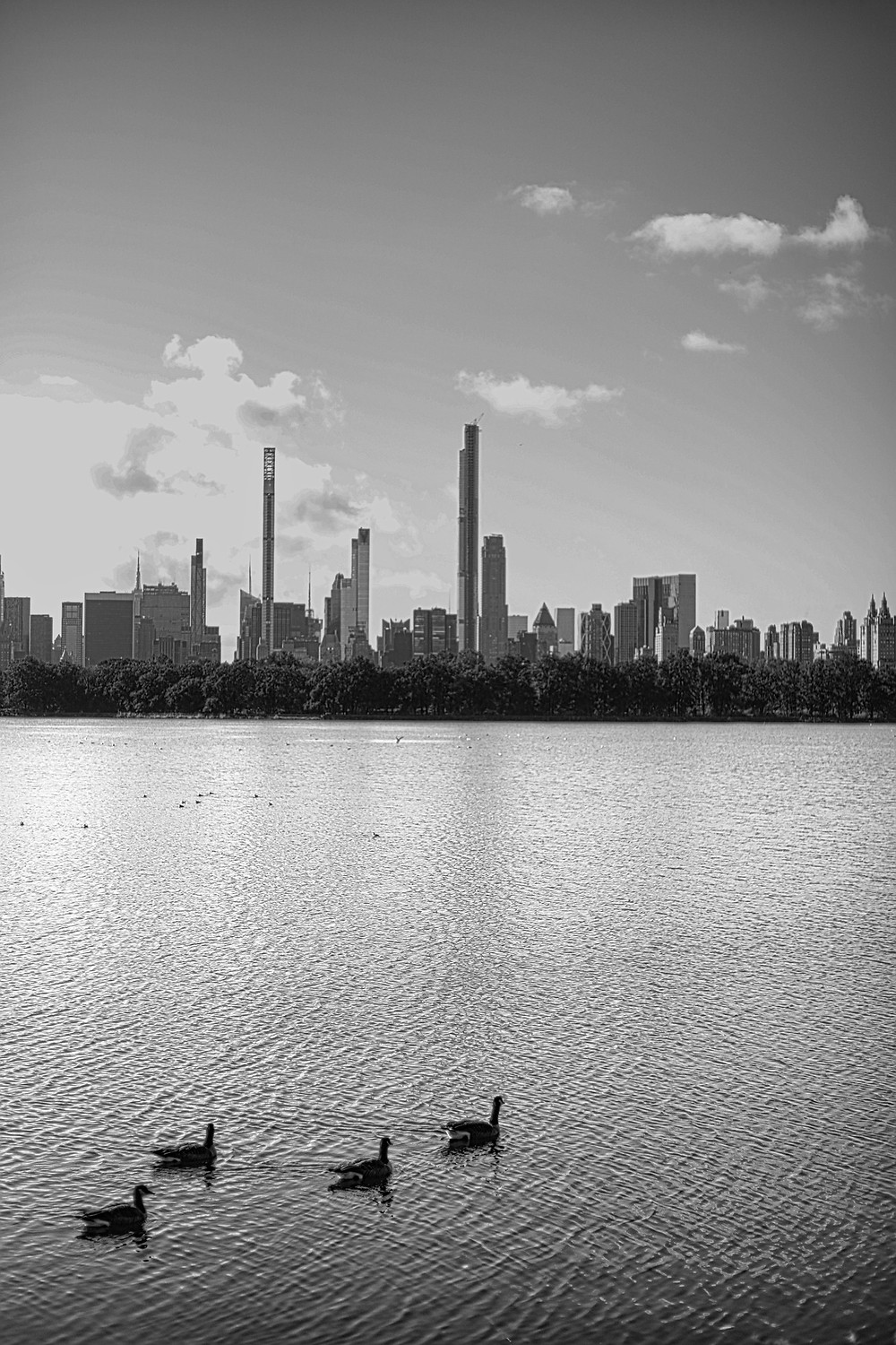 The Reservoir NYC