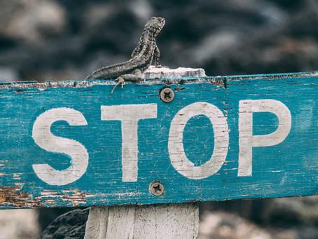 STOP your tinnitus worries