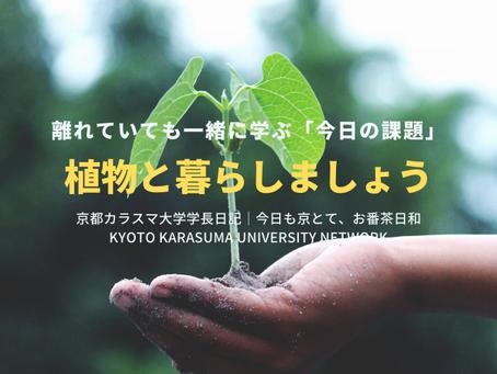 今日も京とて、お番茶日和|京都カラスマ大学学長日記(5/8)