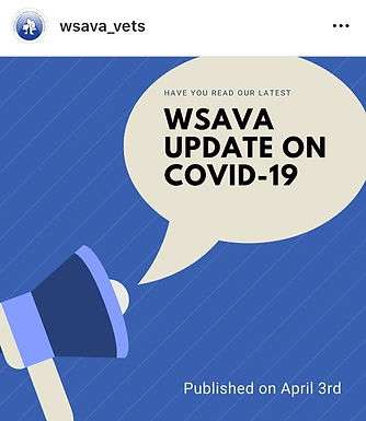 COVID-19: Update in Pets from WSAVA