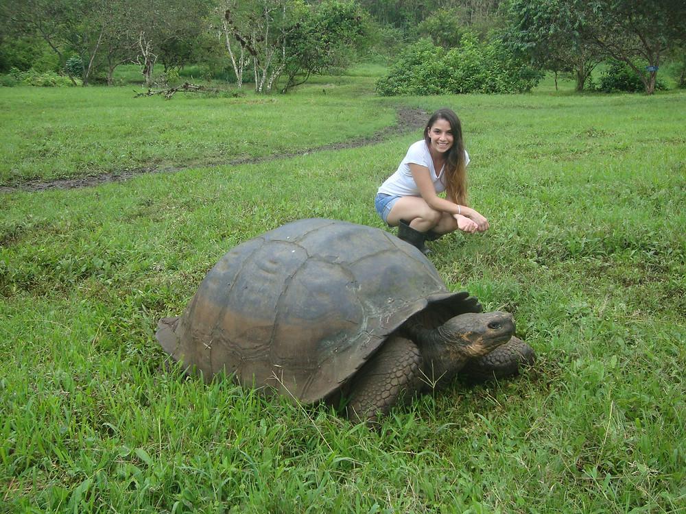 Mujer junto a tortuga gigante en las Islas Galápagos, Ecuador, América del Sur