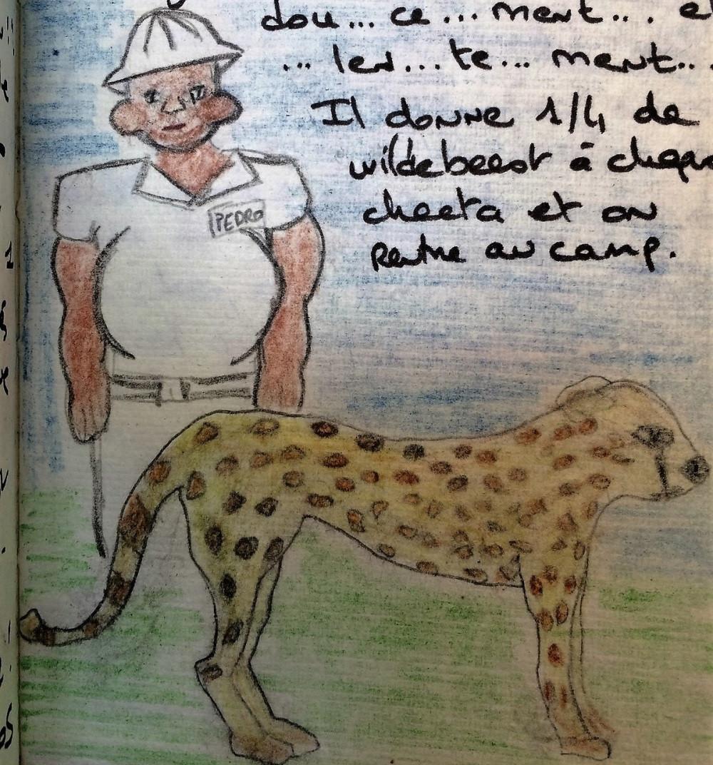 Carnet de voyage Afrique Léopard