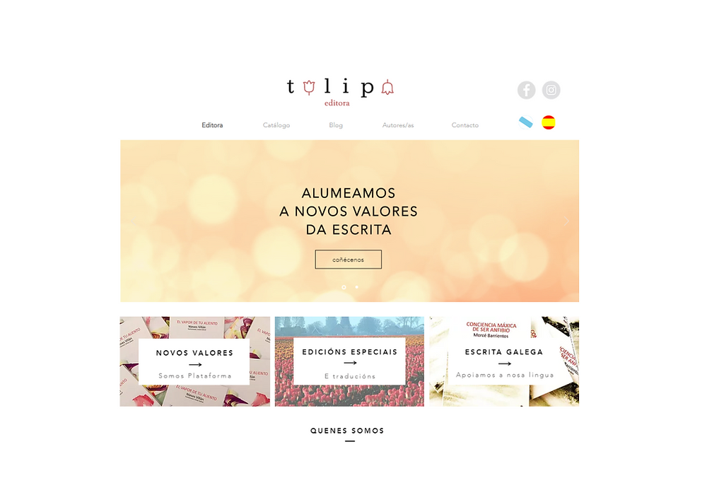 Web de Tulipa Editorial poesia ensaio galego galicia editora