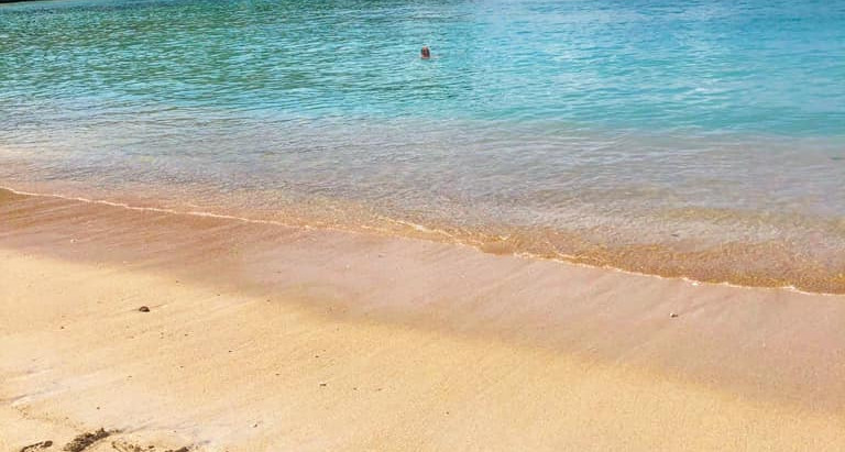 How to Spend a Day on Grenada