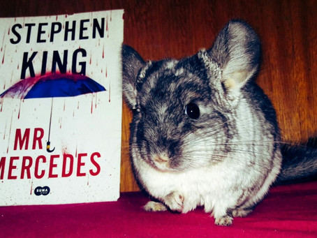 Mr. Mercedes - Stephen King (resenha)